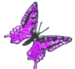 пальчиковая гимнастика бабочка