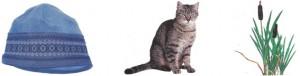 шапка кошка камыш картинный материал