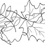 Домашние задания по лексическим темам [Деревья], [Посуда] для ребёнка 5-7 лет с заиканием