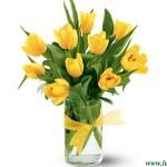 С 8 марта, милые женщины!