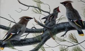 стихи для физминуток для детей 4-6 лет птицы