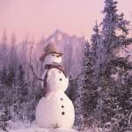 Занятие по развитию речи тема [Зима]